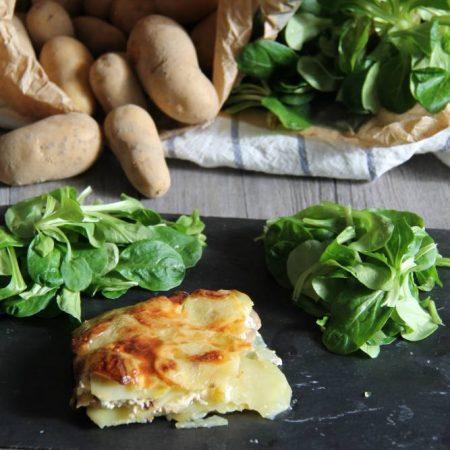 Gratin pommes de terre — champignons