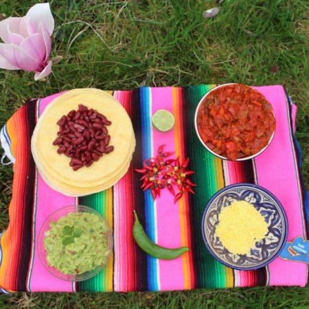 Fajitas aux légumes et guacamole