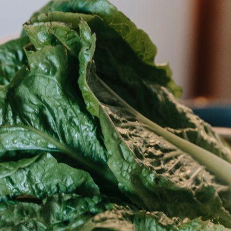 Salade mâche
