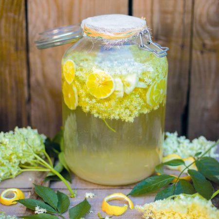 Pétillant de sureau (fermentation)